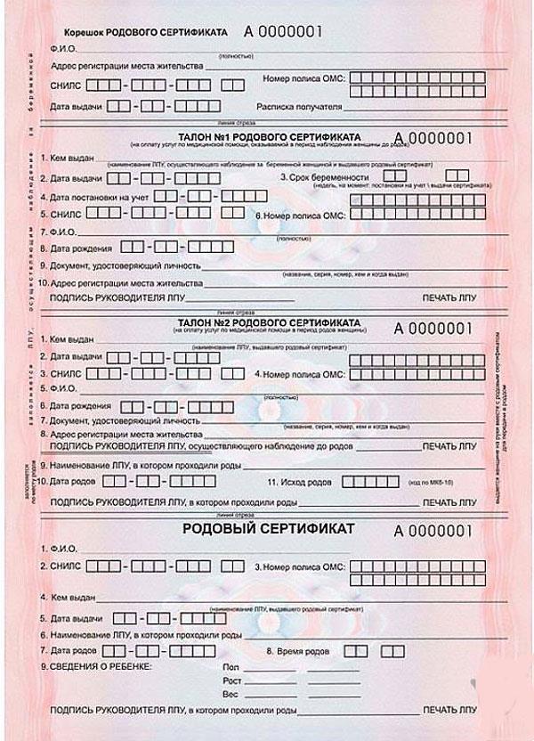 Как выглядит родовой сертификат