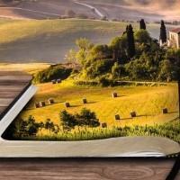 Как проверить земельное имущество перед его приобретением