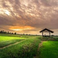 Особенности процедуры изъятия земельного участка